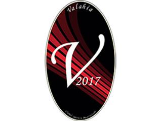 logo CSB Valahia